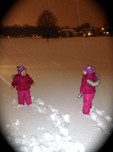 2013 03 Snow